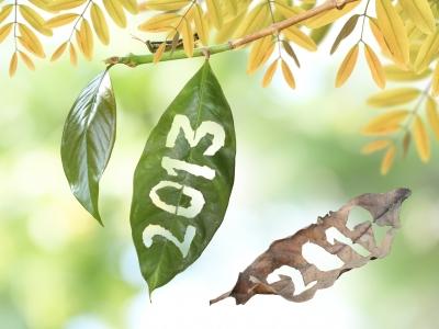 deseos-2013